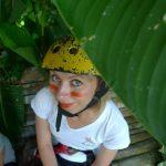 Canopy nad plantacjami kawy